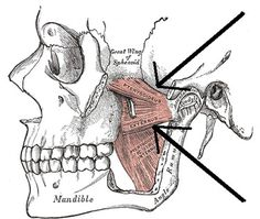 This do-it-yourself jaw pain treatment can be done by anyone, anytime, anywhere. Free yourself from jaw joint pain for free with 3 Simple Steps that you can do yourself - for free.