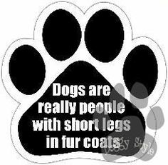 Dogs Are Really Short People In Fur Coats Dog Paw Magnet http://doggystylegifts.com/products/dogs-are-really-short-people-in-fur-coats-dog-paw-magnet