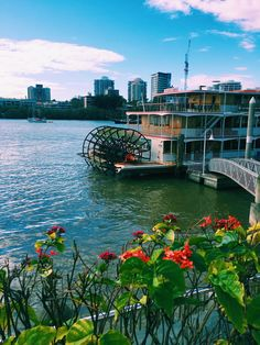 Cruise, wine & dine with the best Brisbane Cruises on the river. Offering amazing views, entertainment, restaurant style dining on the Kookaburra Queens. River Queen, High Tea, Brisbane, Queens, Cruise, Track, Australia, Building, Water