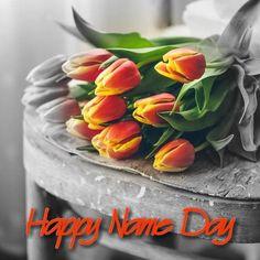 Black And White Colour, Black And White Pictures, Love Flowers, Beautiful Flowers, Color Splash, Splash Photography, Splish Splash, Beautiful Images, Planting Flowers