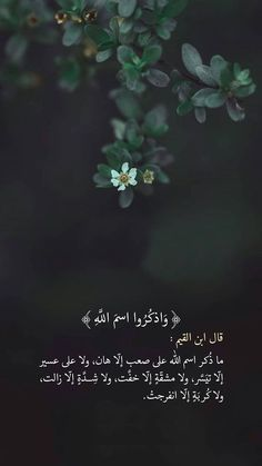 Beautiful Quran Quotes, Quran Quotes Love, Quran Quotes Inspirational, Beautiful Arabic Words, Islamic Love Quotes, Muslim Quotes, Religious Quotes, Arabic Quotes, Words Quotes
