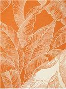 Veranda 321 Tangerine Coastal Fabric, Home Decor Fabric, Drapery Panels, Drapery Fabric, Textile Design, Design Art, Covington Fabric, Fan Image, Fabric Outlet
