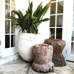 LuMu Interiors — Marble, mortars and ceramic urns. Cool Plants, Potted Plants, Indoor Plants, Large Outdoor Planters, Outdoor Pots, Ibiza, Ideas Terraza, Estilo Tropical, Garden Urns
