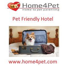 #home4pet. pet friendly hotel