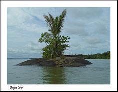 Big stone in Bigiston - Bigiston, Marowijne