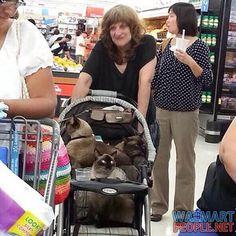 People of Walmart Part 93 – Pics 11