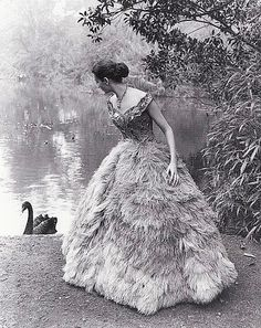 Black and white photo of a beautiful feathered gown!