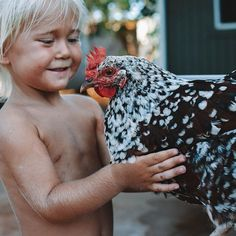 I watch Sandy love on, gently pet, kiss, and even talk to this sweet chicken🐓. I watch him see the value in this chicken's life.  I think children hold a special wisdom that we adults sometimes don't have because we have been conditioned to believe and think a certain way as we age. (But we can get it back if our hearts are OPEN and humbled.🙏🏼) Sandy sees the value in this chicken's life the same way we see the value in our pet dog and cat's lives. There is no difference between them in…