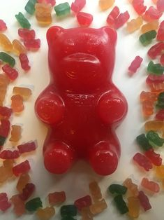 Edible Giant Gummy Bear/The Happy Birthday Bear/ birthday image 0 Kids Cooking Recipes, Cooking With Kids, Cooking Tips, Happy Birthday Bear, Birthday Gifts, Baking Gift, Great Graduation Gifts, Cherry Candy, Creative Desserts