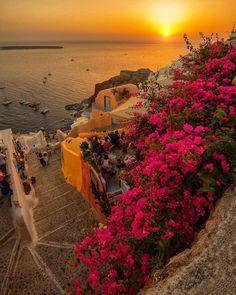 "15.8k Likes, 1,466 Comments - Claudio Bezerra -  (@cbezerraphotos) on Instagram: ""Around the world with me - Oia - Santorini - Greece * ************ Are you ready for Spring?…"""