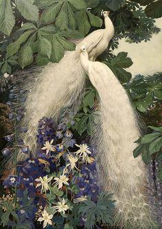 "Two white peacocks sitting in a tree. Jessie Arms Botke ""Indigo Dreams"""