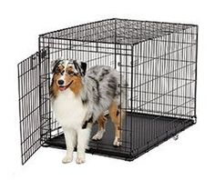 Ace Single Door Crate -- Awesome product. Click the image (This is an amazon affiliate link. I may earn commission from it)