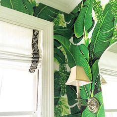 Ideas bathroom wallpaper green living rooms for 2019 Bathroom Wallpaper Green, Pink Wallpaper Iphone, Trendy Wallpaper, Photo Wallpaper, Wallpaper Backgrounds, Bathroom Green, Green Wallpaper, Beautiful Space, Beautiful Homes