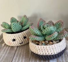 Pattern to make Crochet Rosette Succulent Crochet Flower Patterns, Crochet Patterns Amigurumi, Crochet Flowers, Crochet Cactus Free Pattern, Crochet Minecraft, Kawaii Crochet, Hens And Chicks, Crochet Home, Easy Crochet