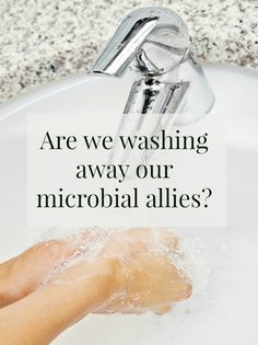 Are we too clean? What can we do to protect our invisible allies?