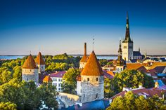 Traveller Tours runs small group tours and day trips from Tallinn, Estonia. Book tours in Tallinn Old Town, nature tours or history tours. Helsinki, Estonian Air, Road Trip, Local Pubs, Cruise Port, Shore Excursions, Tour Operator, Vacation Packages, Eastern Europe
