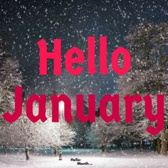 Hello January HD Images Hello January Quotes, January Images, January Month, Cover Pics For Facebook, Birth Flowers, My Themes, Tumblr Quotes, Book Journal, Months In A Year