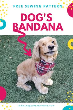 Free Dog Bandana Pattern DIY: for all Sizes! Dog Clothes Patterns, Sewing Patterns Free, Free Sewing, Dog Coat Pattern, Very Small Dogs, Sewing Projects For Beginners, Sewing Tutorials, Dog Coats, Dog Bandana