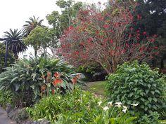 Albert Park, Auckland, New Zealand (by KaVa)