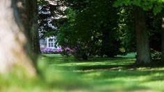 Pałac ukryty wśród zieleni