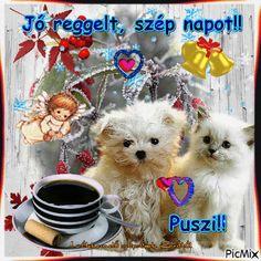 Joelle, Teddy Bear, Humor, Night, Dogs, Animals, Advent, Good Morning, Animales
