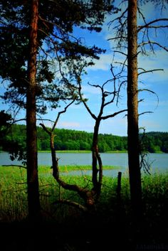 Vuohensaari, Salo, Finland by elise