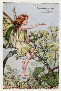 Joie Vintage imprimé du voyageur fée fleur, c.1927 Cicely Mary Barker livre plaque Illustration