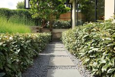 Beautiful town garden in Putney, design includes black granite stone paving and hard wood gates Hard Landscaping Ideas, Stone Landscaping, Garden Landscaping, Back Gardens, Small Gardens, Contemporary Landscape, Landscape Design, Amazing Gardens, Beautiful Gardens