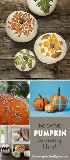 'No Carve' Pumpkin Decorating Ideas & Tutorials! • Check out these ideas…