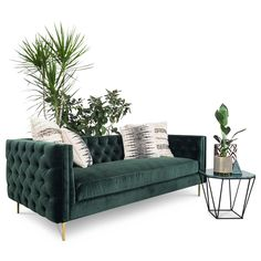 007 Inside Out Sofa in Hunter Green Velvet Living Tv, Living Room Sofa, Living Room Decor, Living Rooms, Green Velvet Sofa, Green Sofa, Emerald Green Couch, Best Leather Sofa, Chairs