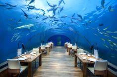 Ithaa Undersea Restaurant, Maldive Islands