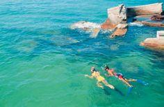 Hubbard's Marina - John's Pass - Madeira Beach, Florida - Deep Sea Fishing snorkeling boat tour