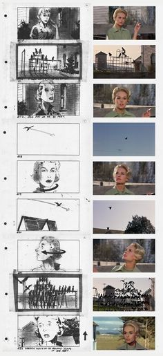 Storyboards for Alfred Hitchcock's The Birds. This is very cool - the still photos match the storyboard drawings. Woman is nearly always central and gives a balanced picture plane, depicting some calm. Birds are not evil yet, only one still shows them in black contrast to background.