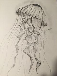 Black sea nettle b&w drawing by Annelieve Ruyters