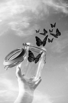 Butterfly coming out of the glass ♥- Borboleta saindo do vidro♥ Butterfly coming out of the glass ♥ - Butterfly Black And White, Black And White Picture Wall, Black And White Wallpaper, Black And White Pictures, Black And White Posters, Black And White Colour, Black Aesthetic Wallpaper, Black And White Aesthetic, Aesthetic Colors