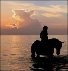 Sunsets and horse back riding