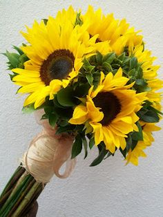 sunflowers tightly wrapped with natural ribbon