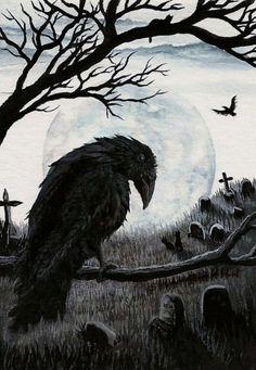 Black Cat Society - Watchful Eye of the Cemetery Warden Raven - ArT Prints by BiHrLe Crow Art, Raven Art, Bird Art, Rabe Tattoo, Quoth The Raven, Jackdaw, Crows Ravens, Art Mural, Gothic Art