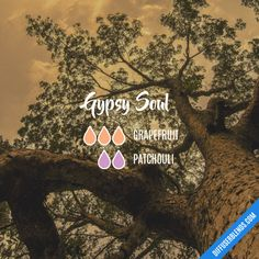 Gypsy Soul - Essential Oil Diffuser Blend Essential Oil Diffuser Blends, Doterra Essential Oils, Doterra Blends, Patchouli Essential Oil, Diffuser Recipes, Aromatherapy Oils, Belleza Natural, Gypsy Soul, Diffuser