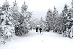 If You Dream Of Fireside Snuggling: Inn To Inn experience In Vermont - The Inn to Inn trails in Vermont are popular during the summer months by bike, but once the snow falls, the venture gets a rustic makeover.  Don snowshoes or cross-country skis to make your way through the Green Mountain trails or Champlain Valley