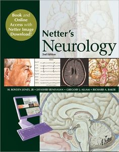Epub download from neuron to brain online.