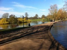 Veralamium park, St Albans. Check out the Roman wall, the Roman mosaic, the museum, kiddies water park, the lovely café, feed the ducks and other birds with seed from the café (don't feed them bread), stroll round the lakes, eat at the Waffle house, and check out the stunning St Albans cathedral.