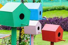 A+bird+house+garden.+A+series+of+5+painted+bird+houses+on+painted+posts+situated+in+a+cluster.