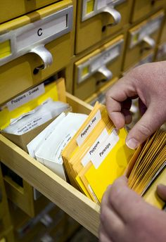 Seed library at the Pima County Public Library - http://www.library.pima.gov/seed-library/ #health #libraries