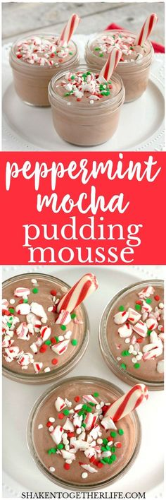 Festive and fluffy, this Peppermint Mocha Pudding Mousse combines the flavors of chocolate and peppermint in an unbelievably easy holiday dessert!