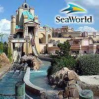 Sea World Orlando.my favorite Orlando stop Florida Vacation Spots, Places In Florida, Orlando Vacation, Florida Travel, Vacation Places, Vacation Destinations, Dream Vacations, Places To Travel, Places To See