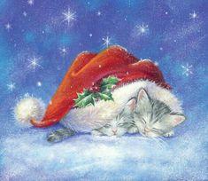 gattini addormentati sotto il cappello di natale, natale