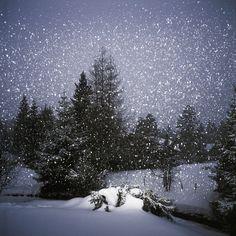Marc Wilson - Snow at Night on www.eyestorm.com