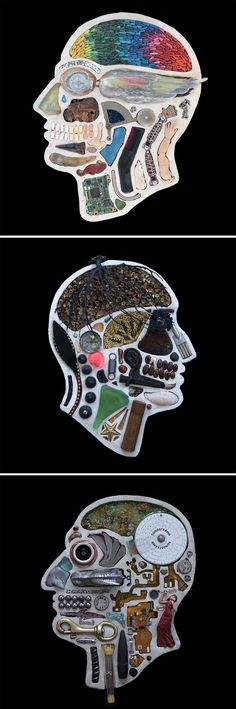 Anatomical Cross-Sections of Human Heads Reveal a Menagerie of Found Objects