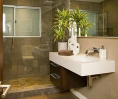 bathroom idea, small and functional - guest or master